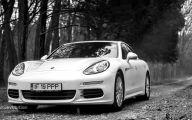 2015 Porsche Panama E-Hybrid 41 High Resolution Car Wallpaper